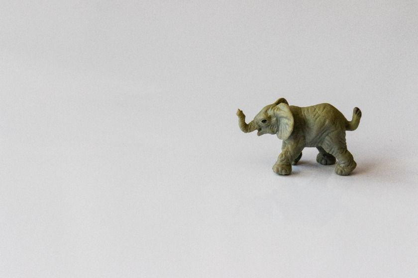 Vom Elefanten im Porzellanladen – 5 Übungen für emotionale Intelligenz
